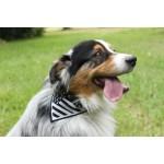 Foulard breton noir chien