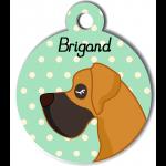 Médaille personnalisée vert chien caramel et marron poils courts